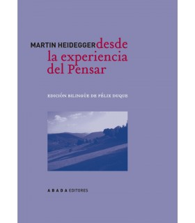 Desde la experiencia del pensar (2ª edición)